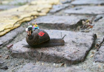 snail_bus_1_-_blog.jpg