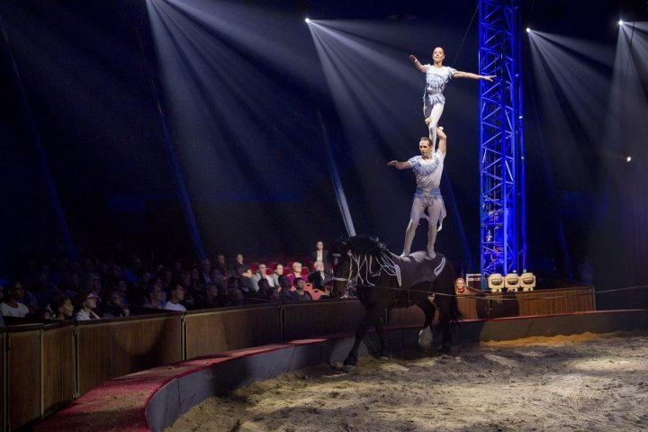 Stephan Gruss pendant le spectacle équestre et aérien Quintessence de la famille Alexis Gruss et des Farfadais