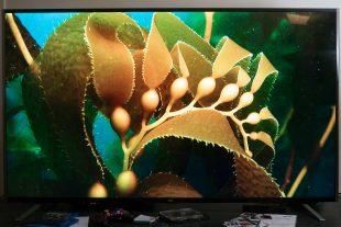 [Avis Télé] TCL Cityline S79, la jolie télévision ULTRA HD 4K accessible