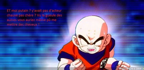 Ma douloureuse découverte de Dragon Ball Evolution