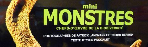 bandeau-monstres.jpg